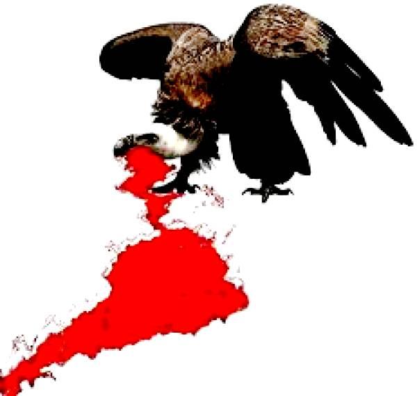 imperialismo y fascismo en latinoamerica