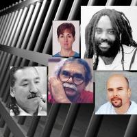 Listado completo o casi completo de los prisioneros políticos en los Estados Unidos