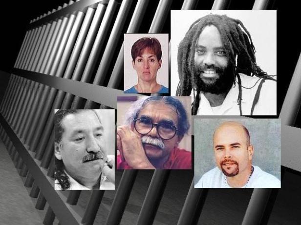 presos politicos en USA