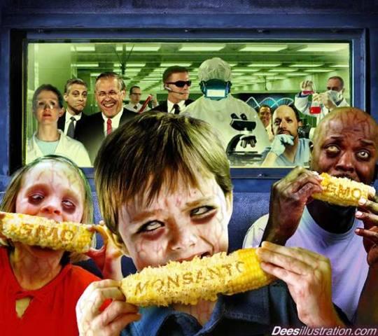 el maíz de monsanto