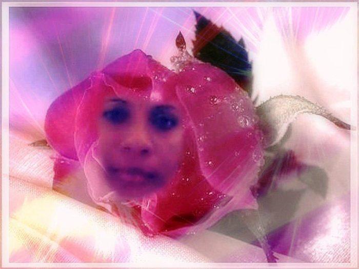 la flor arelis